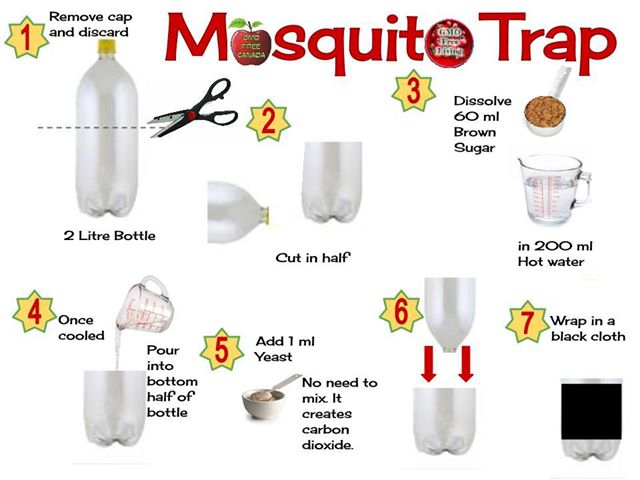 The Diyhy List Of Mosquito Traps You Can Online